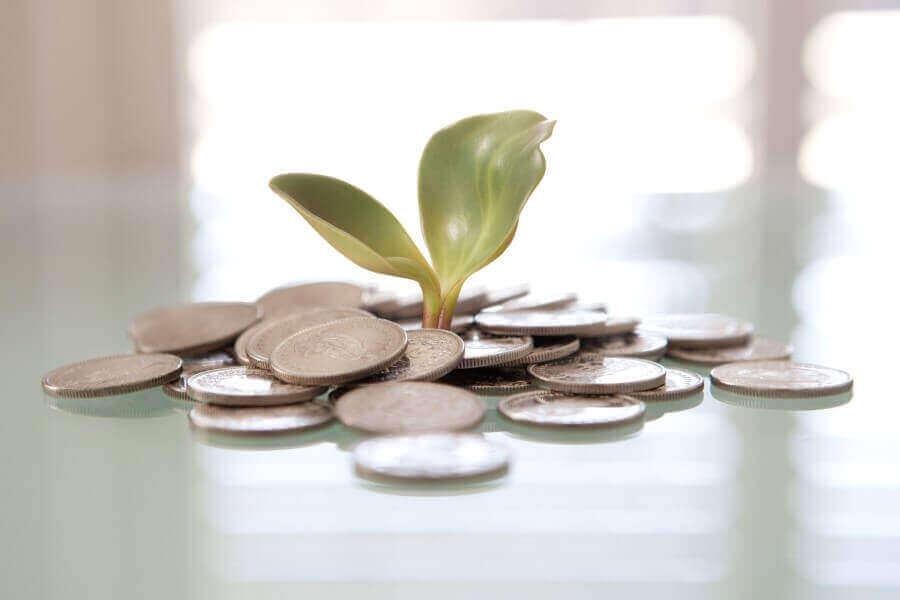 Gestão do dinheiro é fundamental