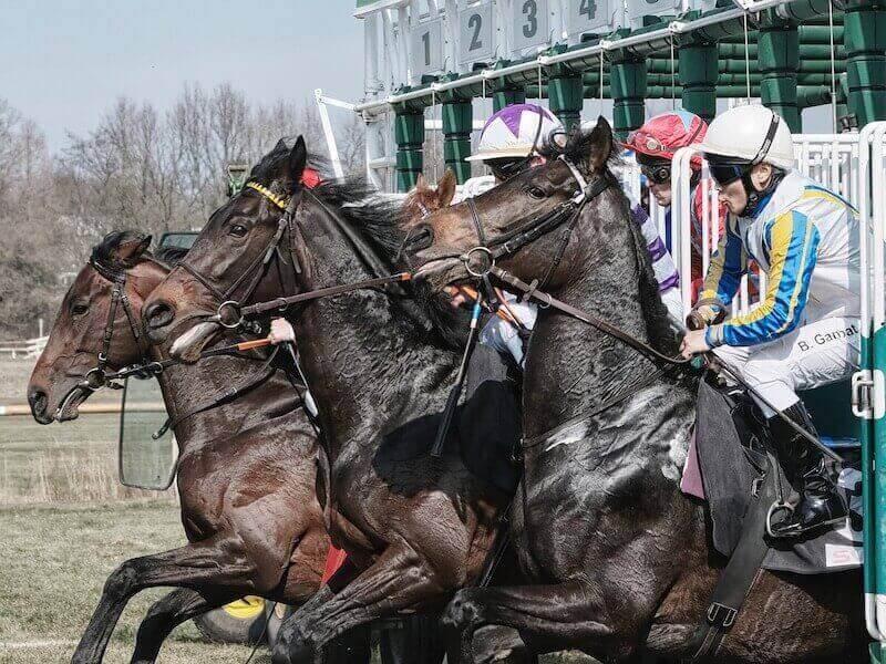 cabalos correndo