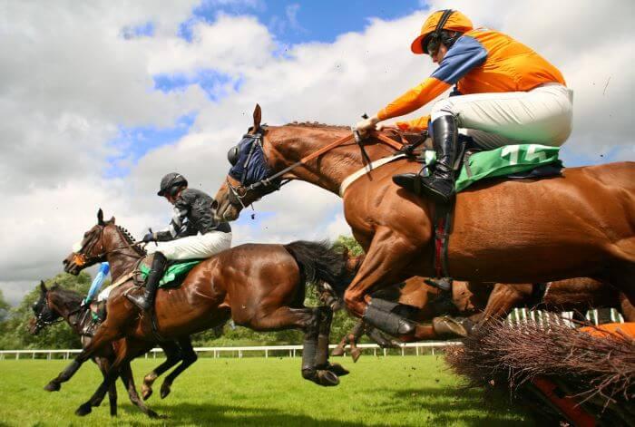 Apostas Dutching Online em Corridas de Cavalos